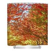 Autumn Trees Digital Watercolor Shower Curtain