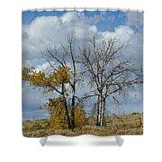 Autumn Trees II Shower Curtain