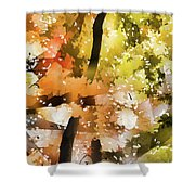 Autumn Trees In The Fog Shower Curtain