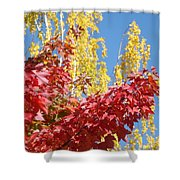 Autumn Trees Red Yellow Fall Tree Blue Sky Landsape Shower Curtain