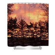 Autumn Twilight Shower Curtain