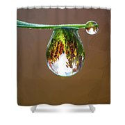 Autumn Vineyard In A Drop Of Due Shower Curtain