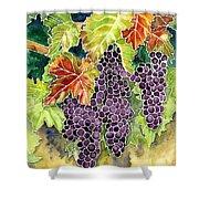 Autumn Vineyard In Its Glory - Batik Style Shower Curtain