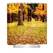 Autumn Walk In Spokane Shower Curtain