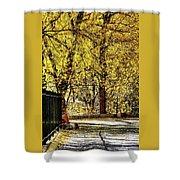 Autumn Walkway Shower Curtain