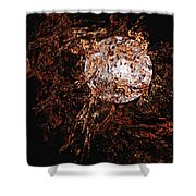 Autumn Wind 1 Shower Curtain
