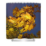 Autumn Winds Shower Curtain