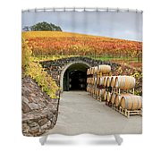 Autumn Wine Cave Shower Curtain