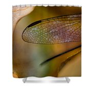 Autumn Wing Shower Curtain