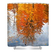 Autumn With Colorful Foliage And Water Reflection 19 Shower Curtain