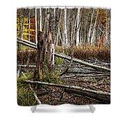 Autumn Woodland Marsh Scene Shower Curtain
