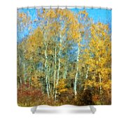 Autumn Woodlot Shower Curtain