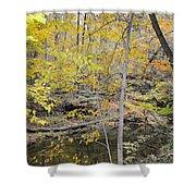 Autumn Woods 2 Shower Curtain