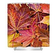 Autumnal Carpet Shower Curtain