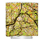 Autumnal Colours Shower Curtain