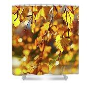 Autumnal Curtain Shower Curtain