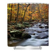 Autumnal Face Shower Curtain