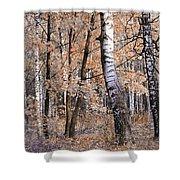 Autumnal Lightness Shower Curtain