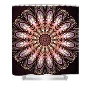Autumnal Mandala Shower Curtain