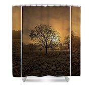 Autumnal Triptych. Shower Curtain