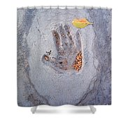 Autumns Child Or Hand In Concrete Shower Curtain