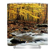Autumn's Fire Shower Curtain