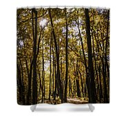 Autumns Fire Shower Curtain