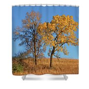 Autumn's Gold - No 1 Shower Curtain