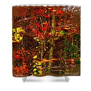 Autumns Looking Glass 2 Shower Curtain