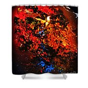Autumns Looking Glass Shower Curtain