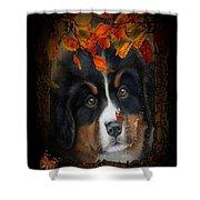 Autumn's Pup Shower Curtain