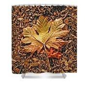 Autumn's Textured Maple Leaf Shower Curtain
