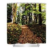 Autumn's Trail Shower Curtain