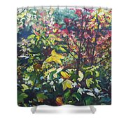 Autumn's View Shower Curtain