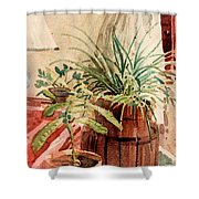 Avacado And Spider Plant Shower Curtain