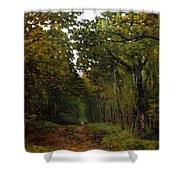 Avenue Of Chestnut Trees Shower Curtain