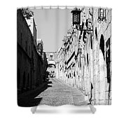 Avenue Of The Knights Shower Curtain