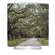 Avenue Of The Oaks Shower Curtain