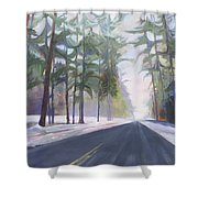 Avenue Of The Pines-winter Shower Curtain
