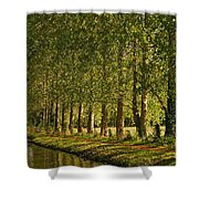 Avenue Of Trees On The Kennet And Avon Canal Shower Curtain