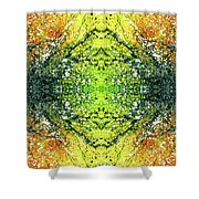 Awakened For Higher Perspective #1424 Shower Curtain