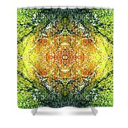 Awakened For Higher Perspective #1425 Shower Curtain
