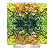 Awakened For Higher Perspective #1426 Shower Curtain