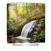 Awakening In The Forest Shower Curtain