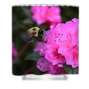 Azalea And Mr. Bumbles 05 Shower Curtain