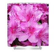 Azalea Floral Garden Fine Art Photography Baslee Troutman Shower Curtain