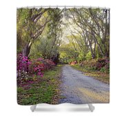 Azalea Lane By H H Photography Of Florida Shower Curtain