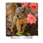 Azalea Squirrel Shower Curtain
