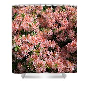 Azalea Wall Shower Curtain