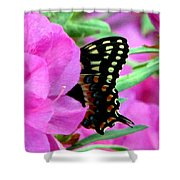Azalea With Butterfly Shower Curtain